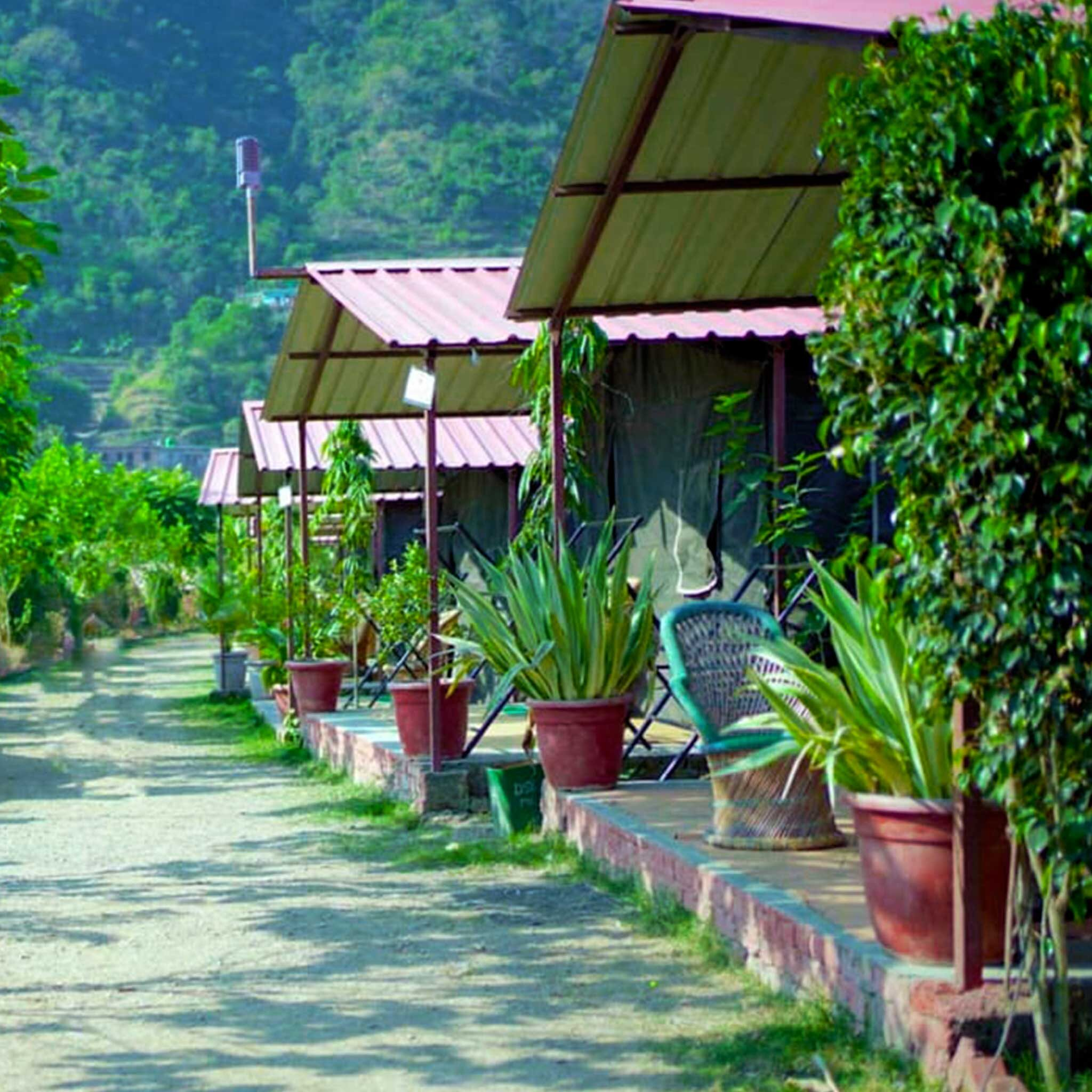 luxury-swiss-camping-in-rishikesh-5