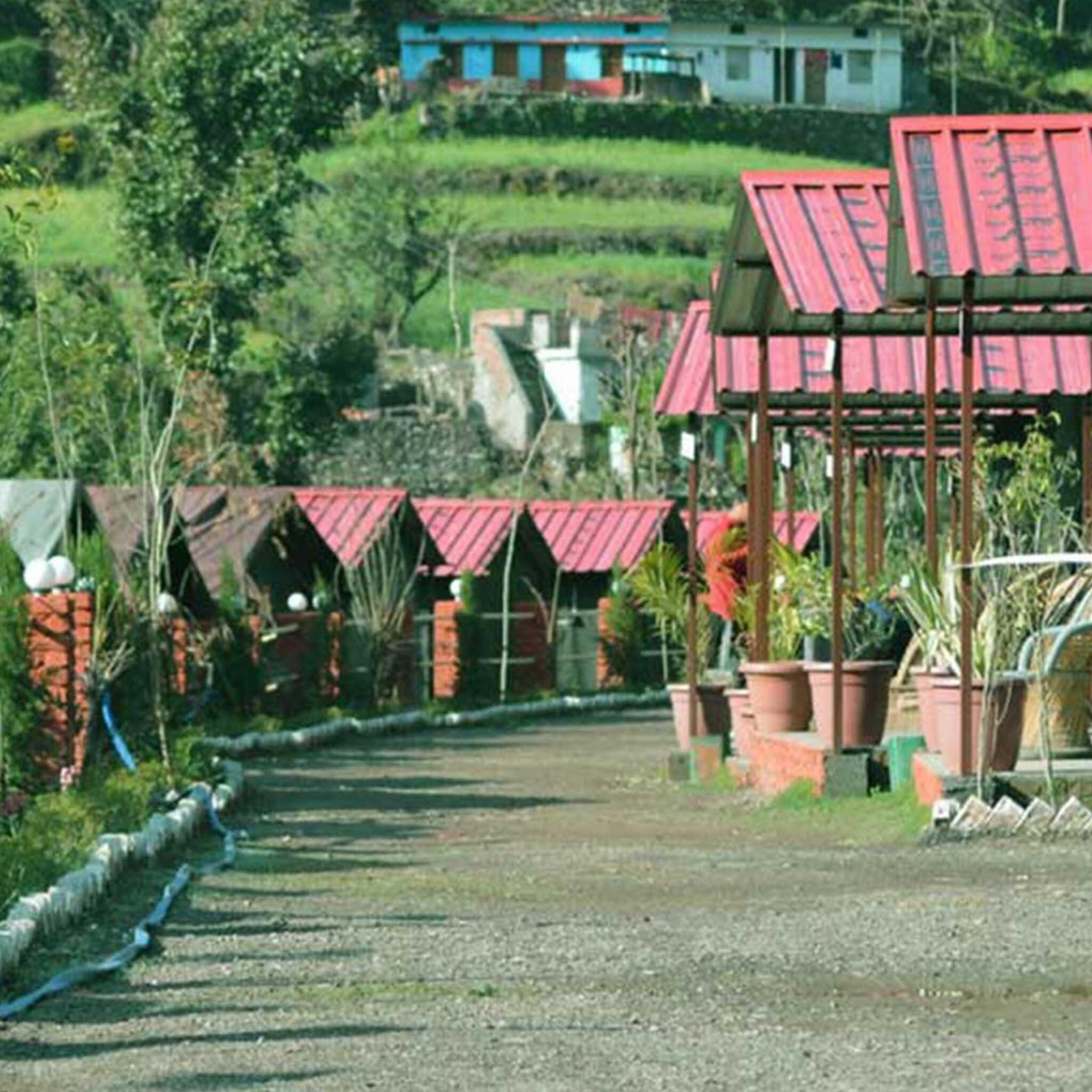 swiss-luxury-camping-in-rishikesh2